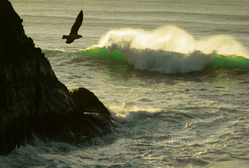 Somber Waves of Green Fine Art Photograph by Daogreer Earth Works